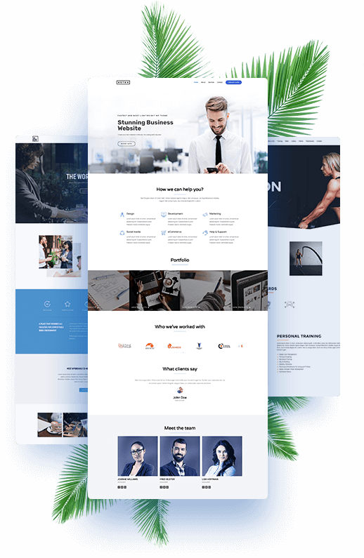 Collage Of Sample Website Designs